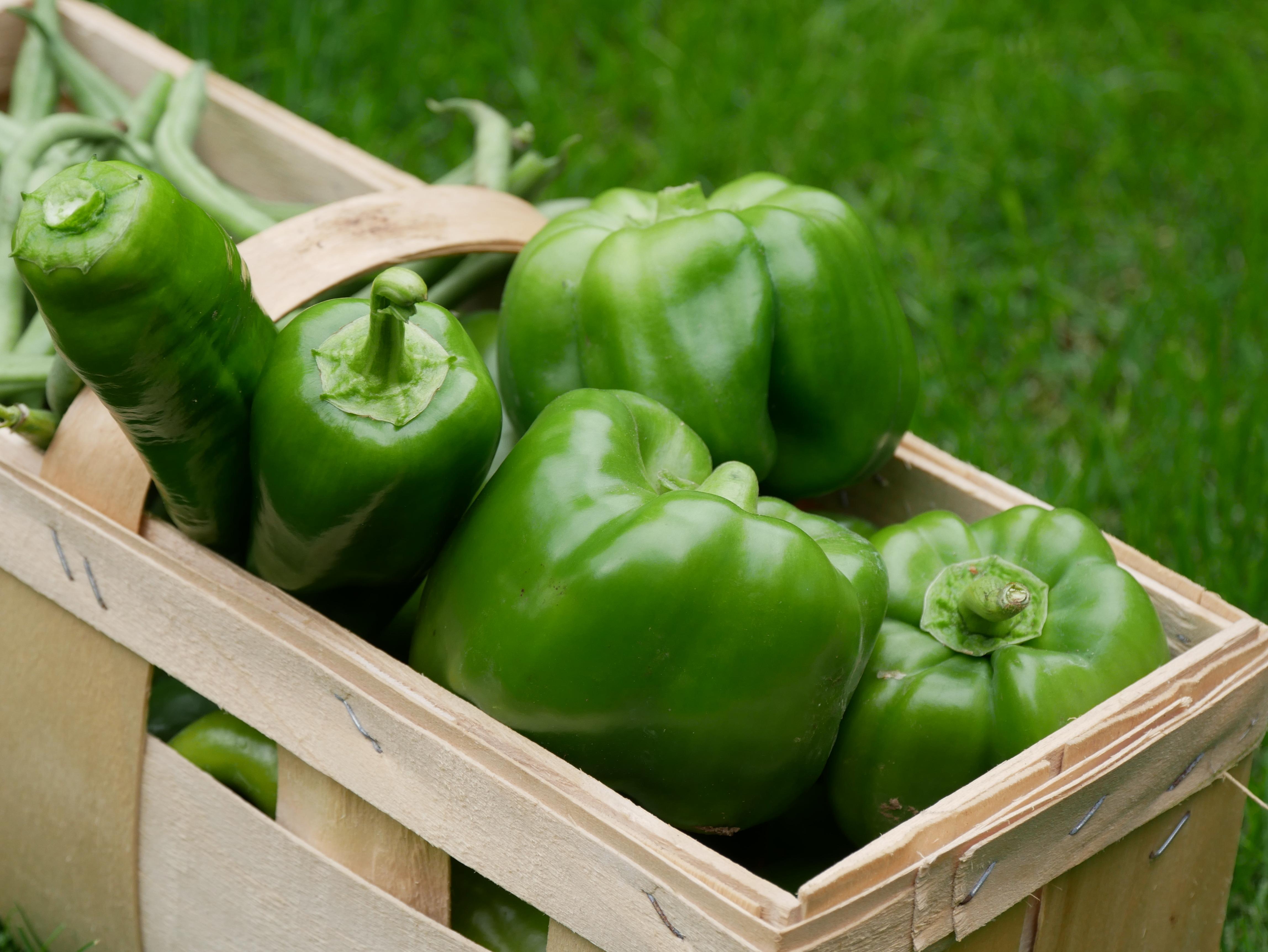 Kinder und Gemüse - ein heikles Thema